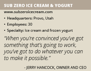 Sub Zero Ice Cream Yogurt info