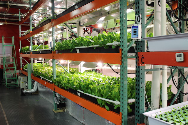 Vertical farming metropolis farms